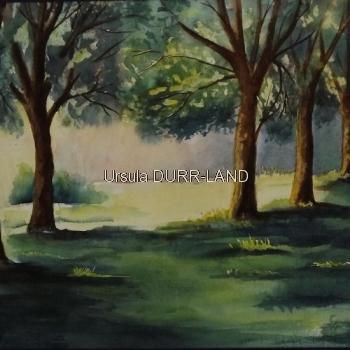 N° 078 Ma forêt