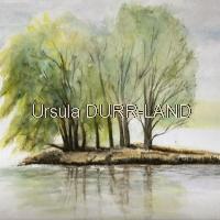 186 Aquarelle L'ile aux arbres